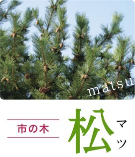 市の木:松